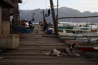 Порт Бусанги