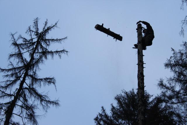 Лес рубят, щепки летят