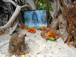 Шива и его друзья. Фото