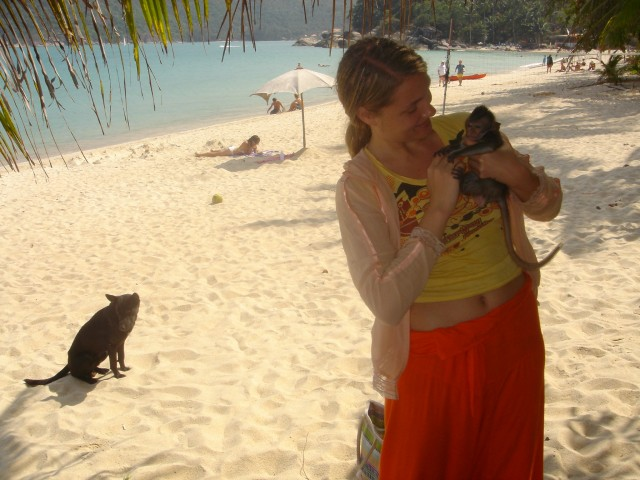 На Ко Пангане Катя сапасет обезьянку от хищной собаки