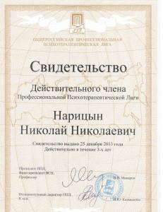 ППЛ_Нарицын2013