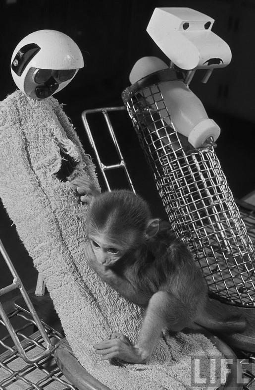 Про Гарри Харлоу и его эксперименты над обезьянами H_8