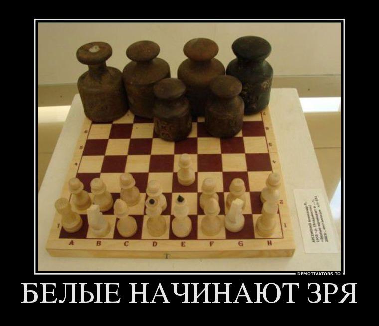 26110734_belyie-nachinayut-zrya