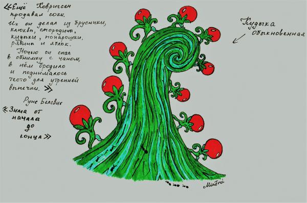 Ботанические рисунки по Простодурсену 002 (2).png