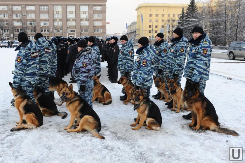 101700_Politsiya_Chelyabinsk__sobaka_politsiya_kinologi_1419415542_original