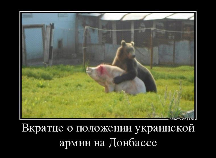 70122664_vkrattse-o-polozhenii-ukrainskoj-armii-na-donbasse