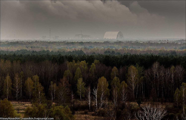 7 мифов о Чернобыле, в которые почему-то верят