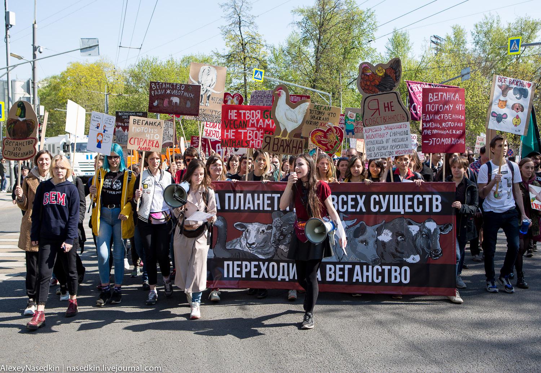 МОНСТРАЦИЯ в Москве! Как это было (фото)