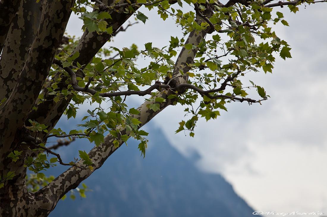 Лихтенштейн – карликовое государство