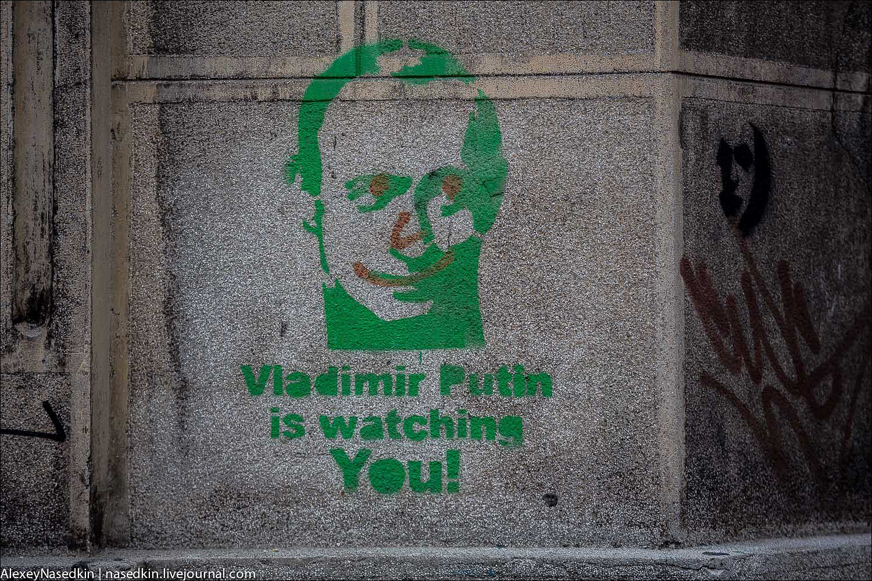 Дикая истерика из-за Навального