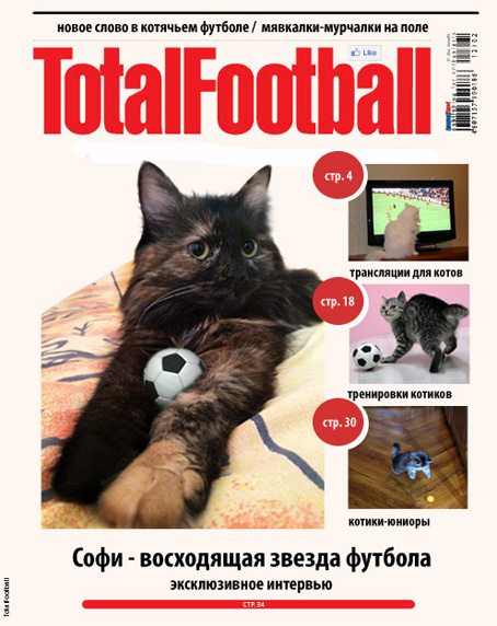 TotalFootball_3