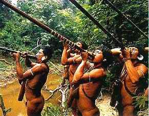 indios temimin_