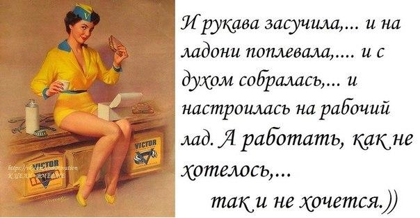 TyZ_57HHOMc