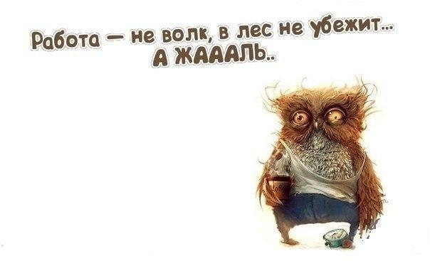-tqgCzFe6m8