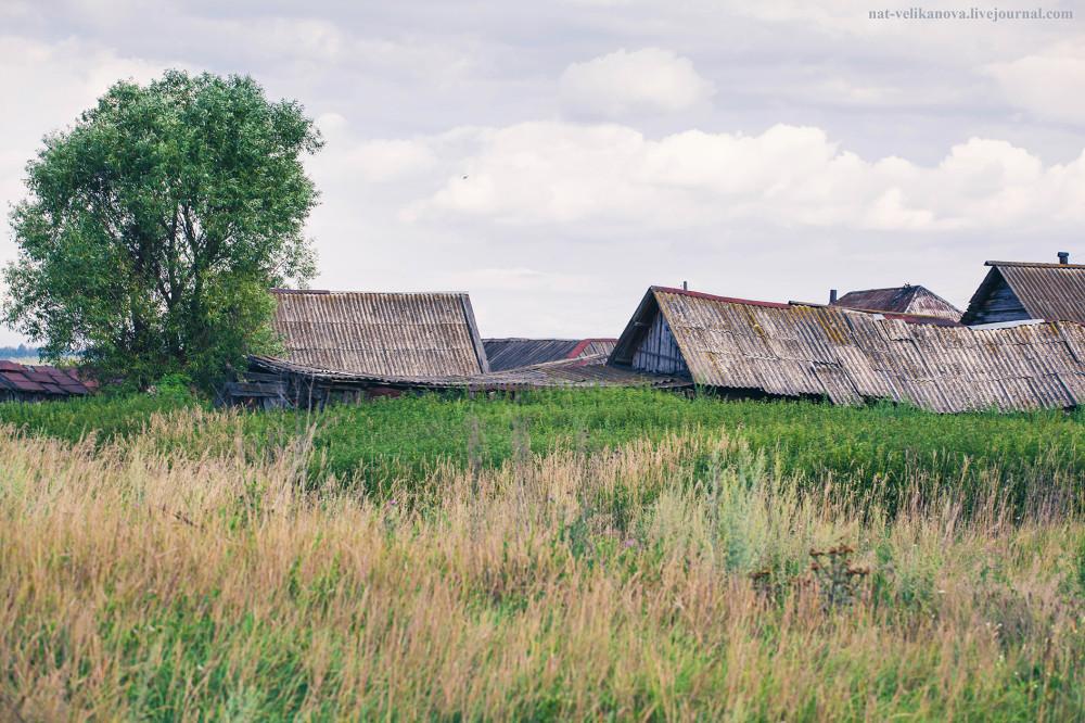 Домики в глубинке Ульяновской области (фото) - фото 13
