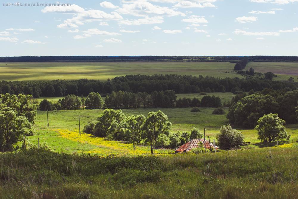 Домики в глубинке Ульяновской области (фото) - фото 15