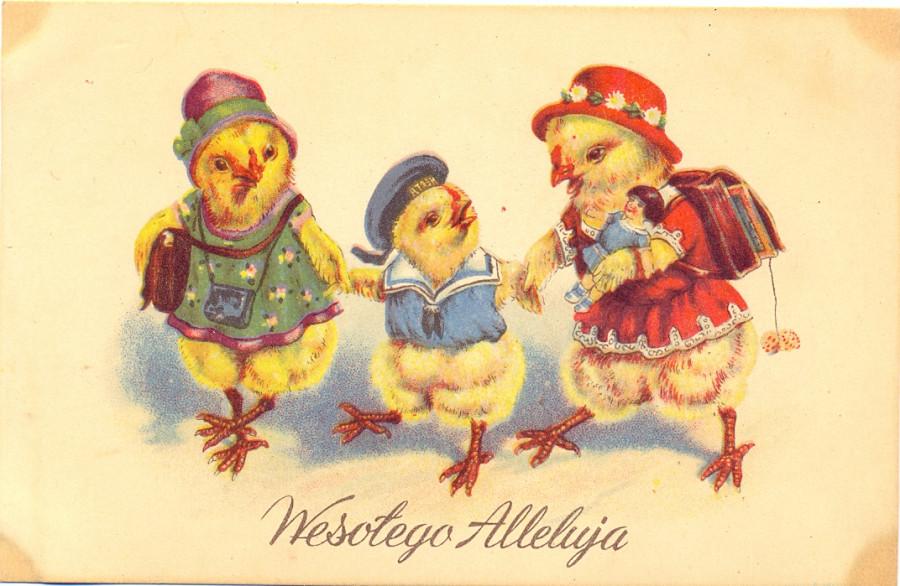 Прикольными надписями, старые польские открытки