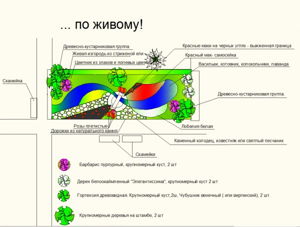 План композиции