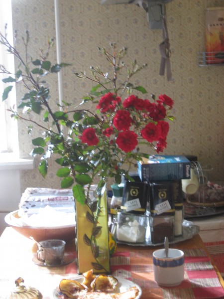 Последние розы2