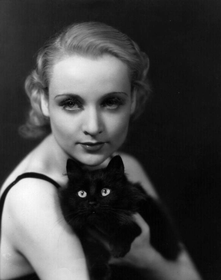 Tags коты и женщины черные коты