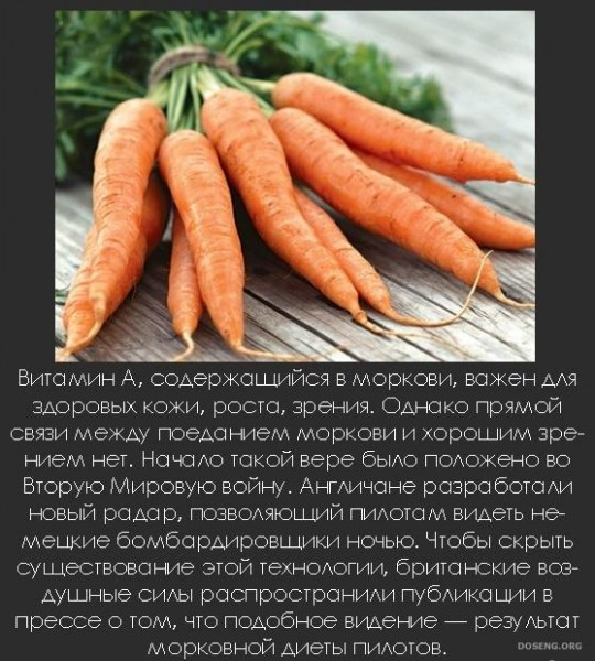 1246311456_interesnye_fakty_40_foto_30