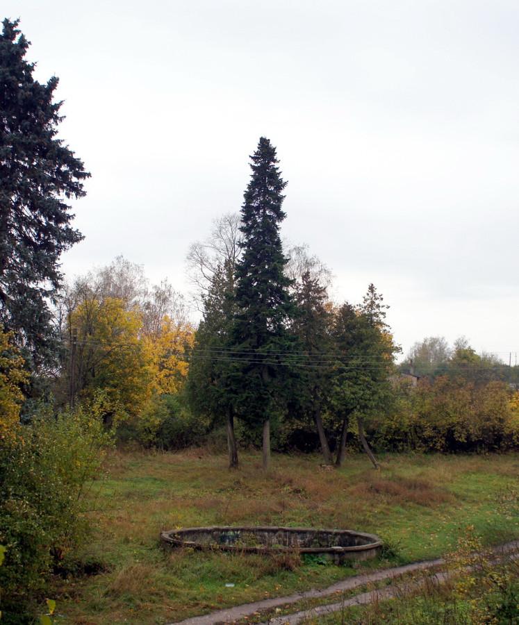 Северный фонтан.