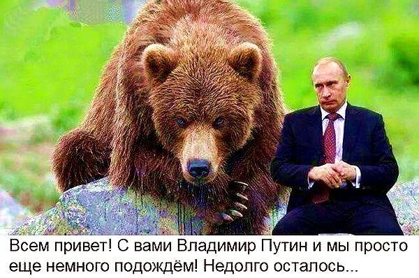 Русский  медведь  никогда  не  умирает,  он  лишь  впадает  в  спячку   !!!