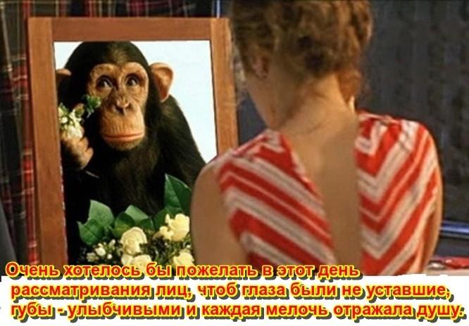 https://ic.pics.livejournal.com/natalia_sibir/24244290/2077843/2077843_original.jpg