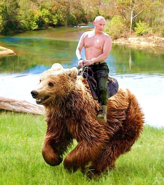 Наш  главный  Медведь !!!  13  декабря  -  день  медведя