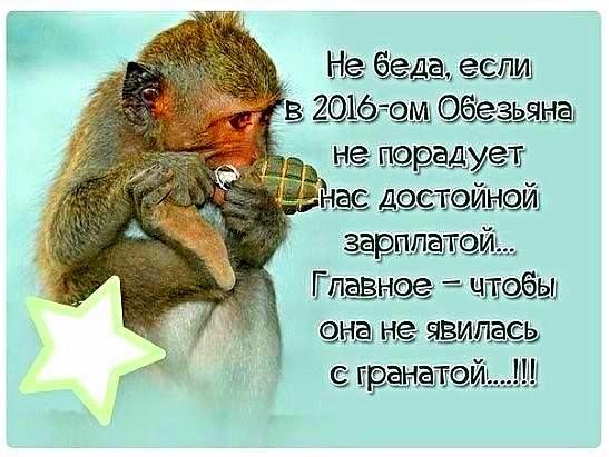 Не беда, если в 2016-ом Обезьяна не порадует нас достойной зарплатой....Главное - чтобы она не явилась с гранатой.......