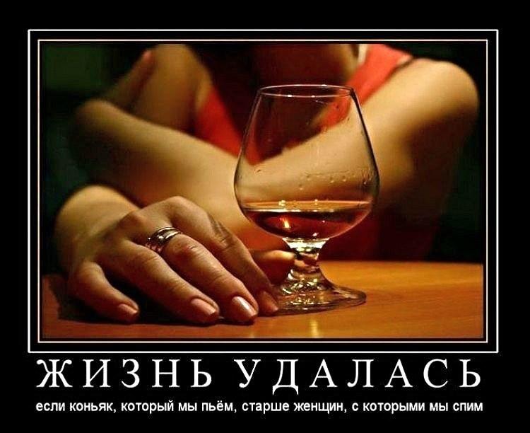 Жизнь удалась если коньяк, который мы пьём, старше женщин, с которыми мы спим