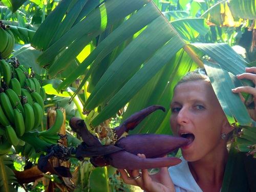 Я не Роднина, это не банан и Обамы тут точно нет…..Балуюсь )))))