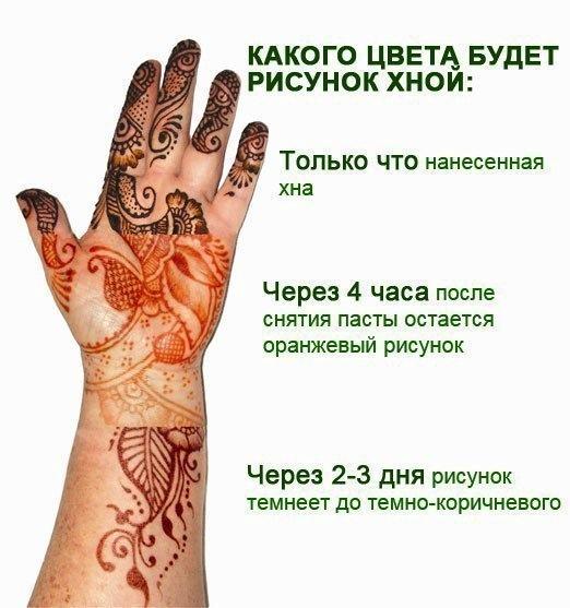 gxoLKRSv1oc