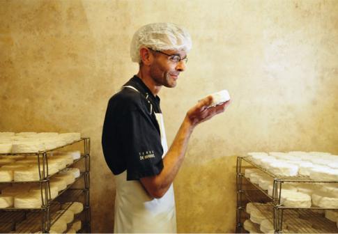 1229-Camembert