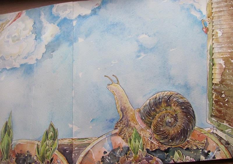 snail_123