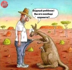 с кенгуру и мужиком