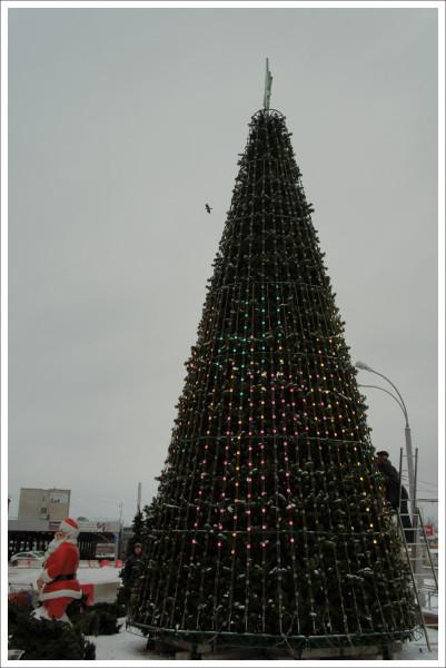 Первая елка