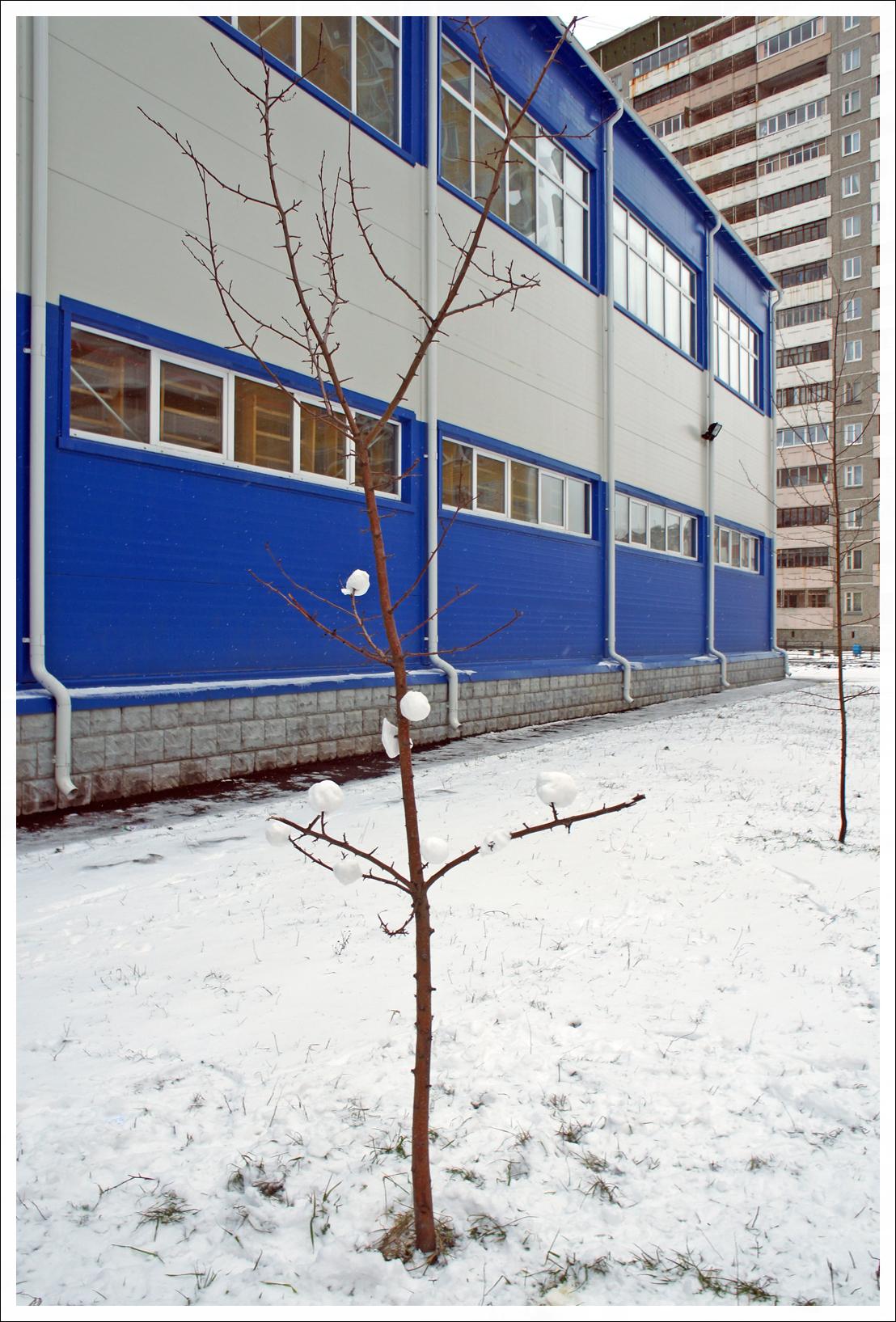 опять снег