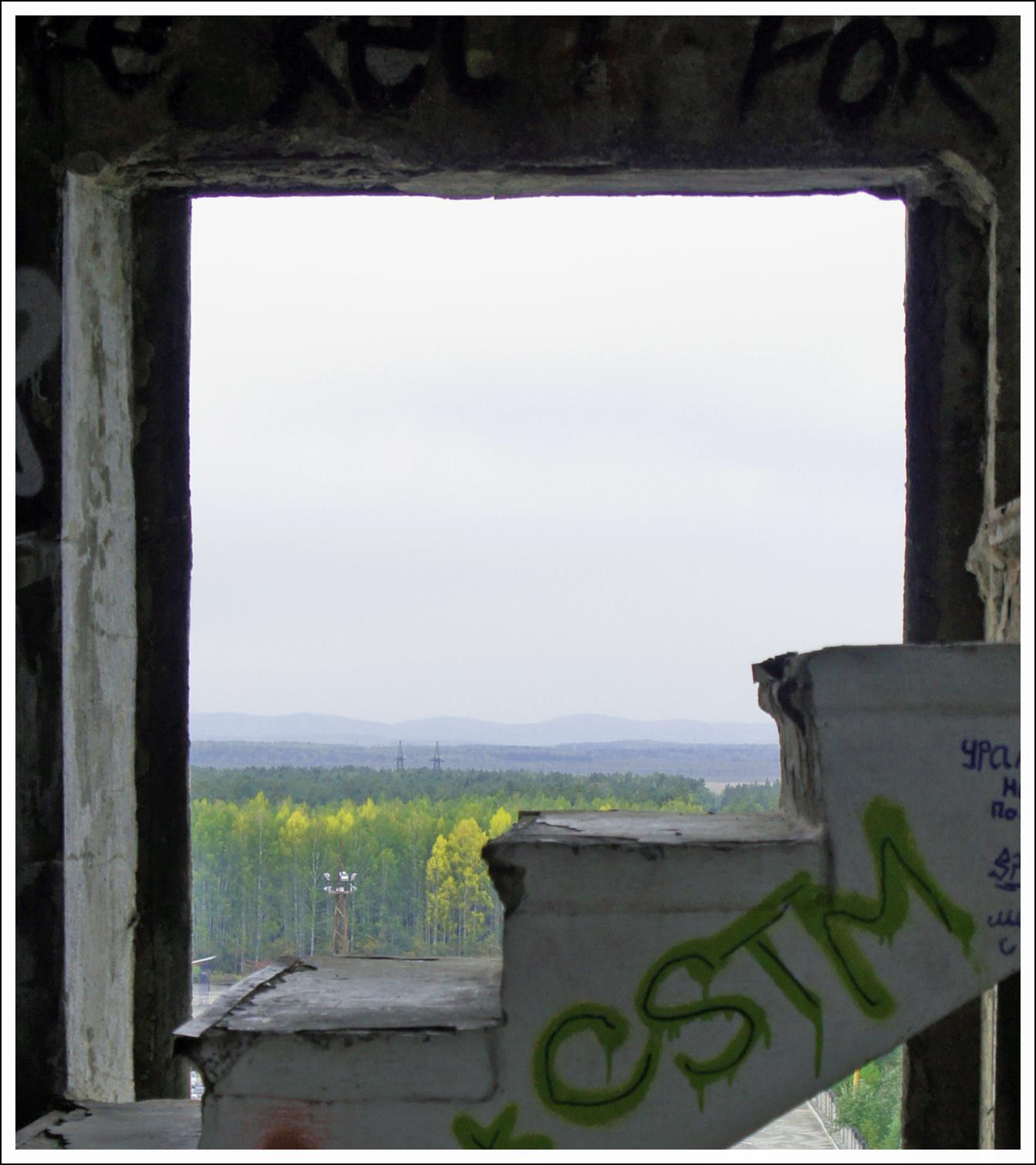 за окном тайга