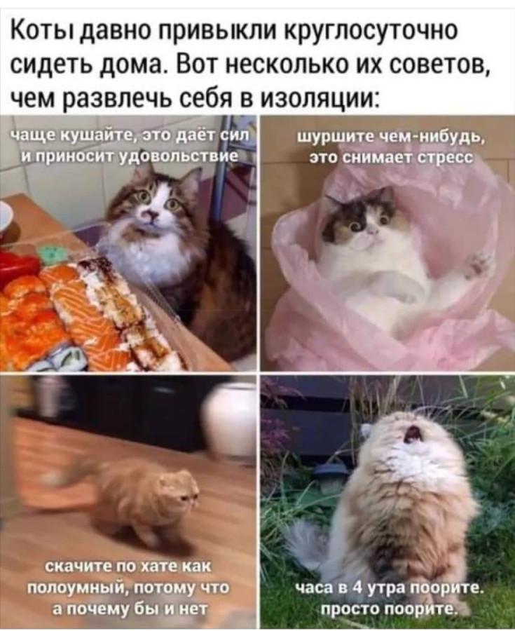 KAeMIgRzu_k