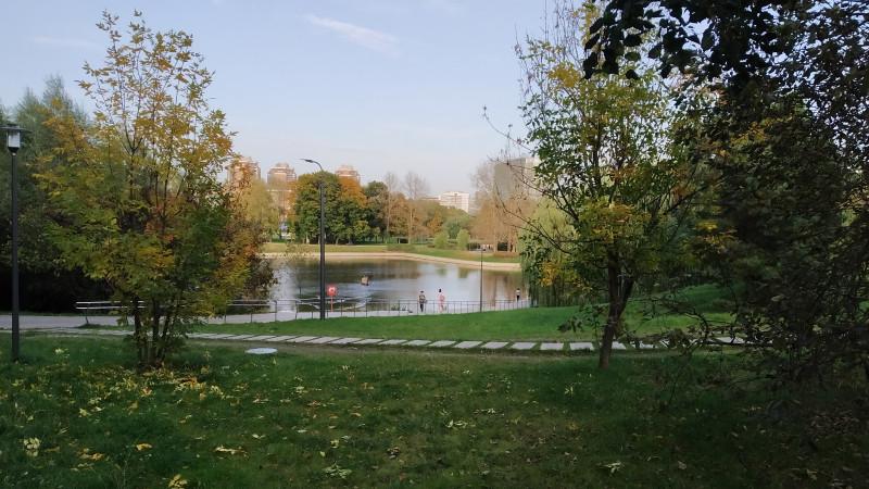 Два прекрасных дня. В лесу и в парке у Речного вокзала. IMG_20200927_164504.jpg