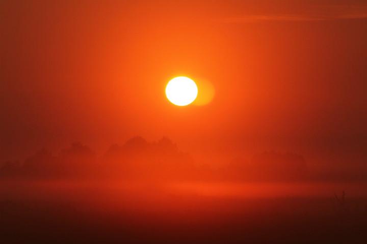 (5) Солнышко. И ничего лишнего