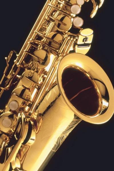 Саксофон (14)