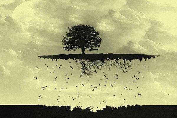 Дерево без корней