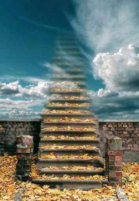 Лестница в небо (5).jpg