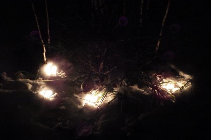 Свечи под елкой ЖЖ.jpg