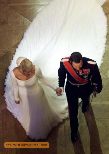 (4) Хочешь такое же платье... Выходи замуж за принца!.jpg
