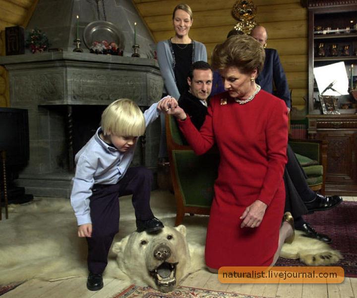 (10) С бабушкой-королевой ничего не страшно!.jpg