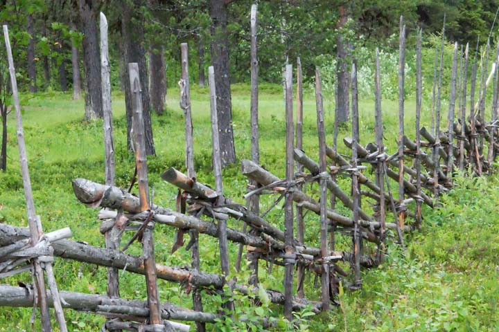 (3) Fence.jpg