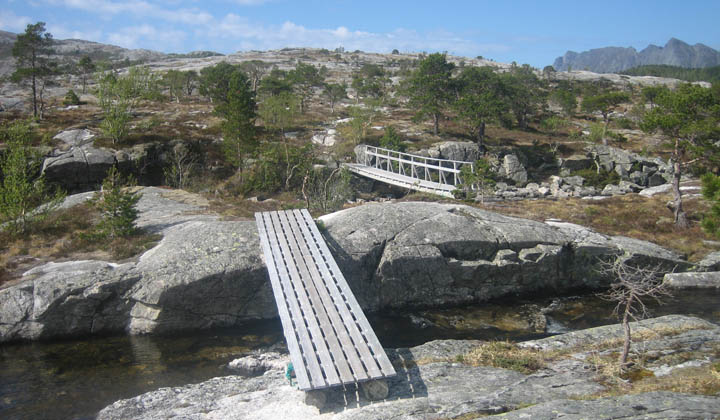 (13) Bridges.jpg